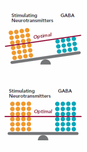 Figure 1. Stimulating neurotransmitters (e.g. norepinephrine, glutamate, and epinephrine) increase in response to stress.  In a healthy response, compensatory neurotransmitters (e.g. GABA, serotonin, and glycine) should increase to compensate for the increase in stimulating neurotransmitters.