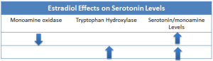 Figure 2. Estradiol increases tryptophan hydroxylase which will increase the synthesis of serotonin. 2 Estradiol decreases MAO activity, which decreases the rate of monoamine neurotransmitter degradation, leading to increased levels of these neurotransmitters (3).