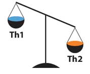 Figure 1. During the luteal phase and during pregnancy, the immune system should be biased toward a Th2 response.