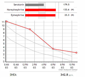 Figure 1. Early-stage adrenal fatigue is characterized by elevated levels of adrenal neurotransmitters and hormones.