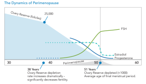 Figure 1. As women  age, ovarian reserve falls, eventually leading to hormone fluctuations and the onset of menopause.