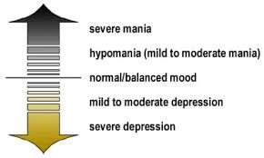 Figure 1. There are several subtypes of bipolar disorder.